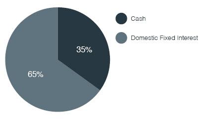 Cash Plus Bond Investment Distribution